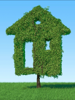 The Green Homes Grant: Everything you need to know