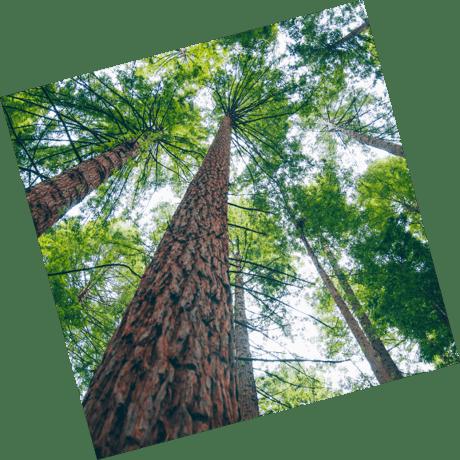 Benefits of green energy